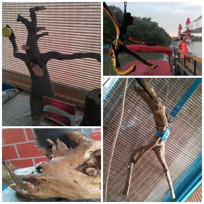 pubtourist_ebihal_driftwoods
