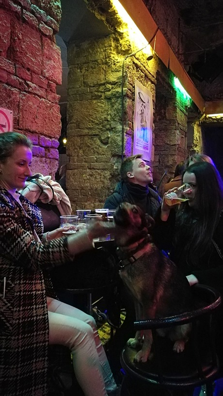 Instant in Nagymező street was a dogfriendly place - Pubtourist
